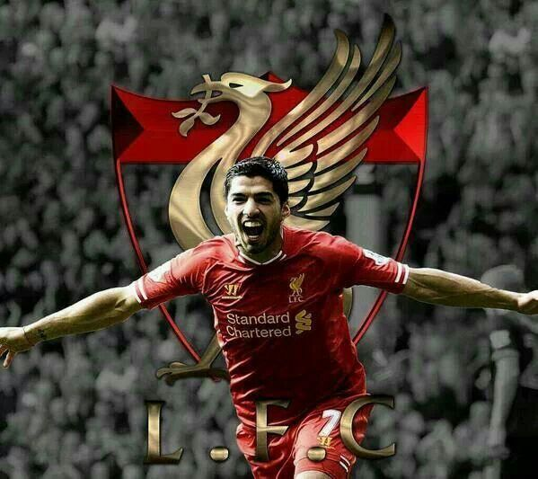 Luis suarez lfc wallpaper pc hd wallpaper iphone wallpaper - Suarez liverpool wallpaper ...