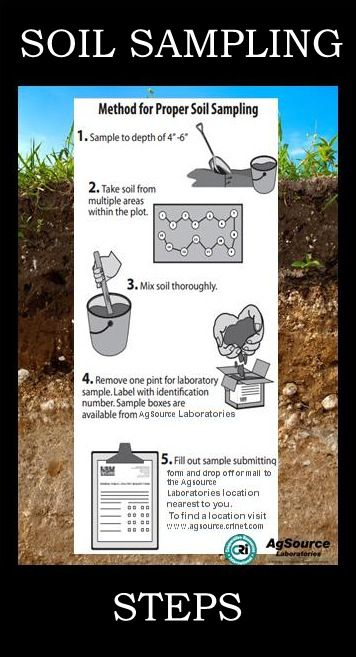 To Obtain A Good Soil Sample For Testing Follow These Simple