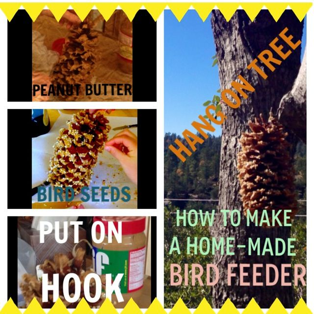How I make a bird feeder.  My daughters Claire and Phoebe did this craft on a family trip to Idyllwild! So cute!!!