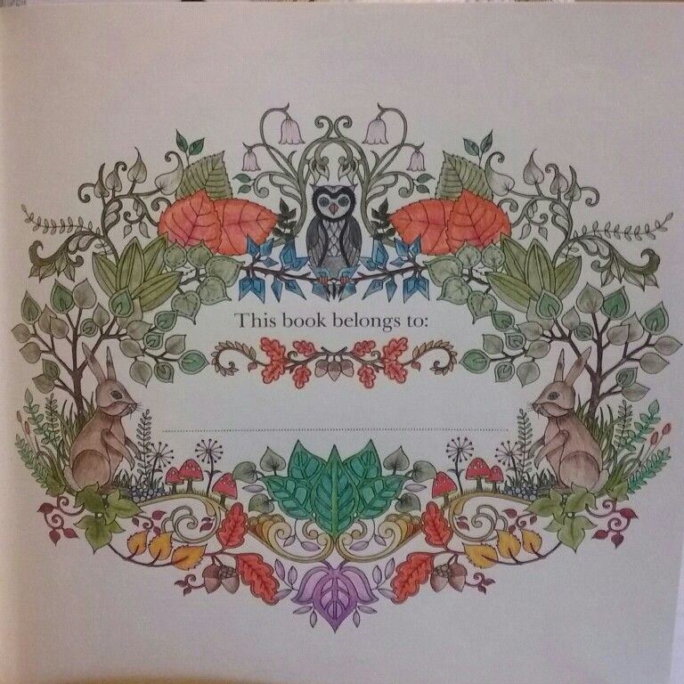 Johanna Basford Enchanted Forest Used Barnes And Nobles Watercolor Pencils 24pc Set Colored By S Field