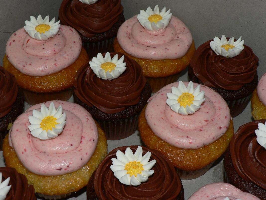 Sweets – Cupcakes