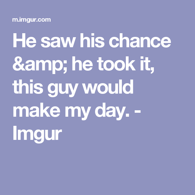 He saw his chance & he took it, this guy would make my day. - Imgur