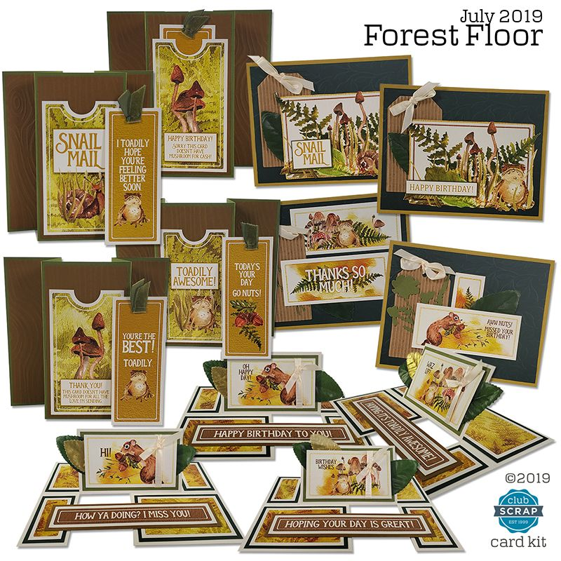 Forest floor july 2019 bring the outdoors into your