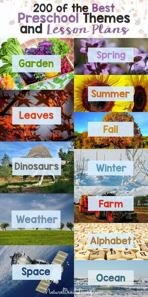 Photo of 200+ of the Best Preschool Themes and Lesson Plans