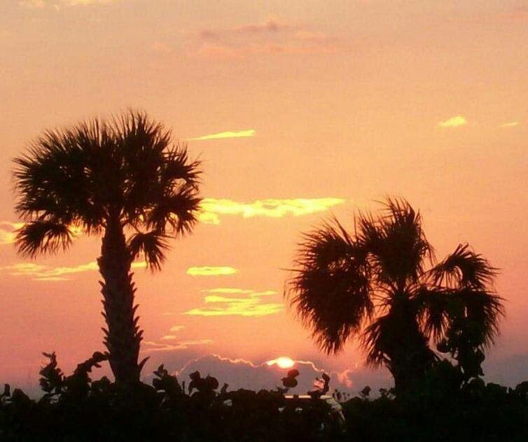 Englewood, Florida Sunset   Sunset, Backyard fun, Sunrise ...
