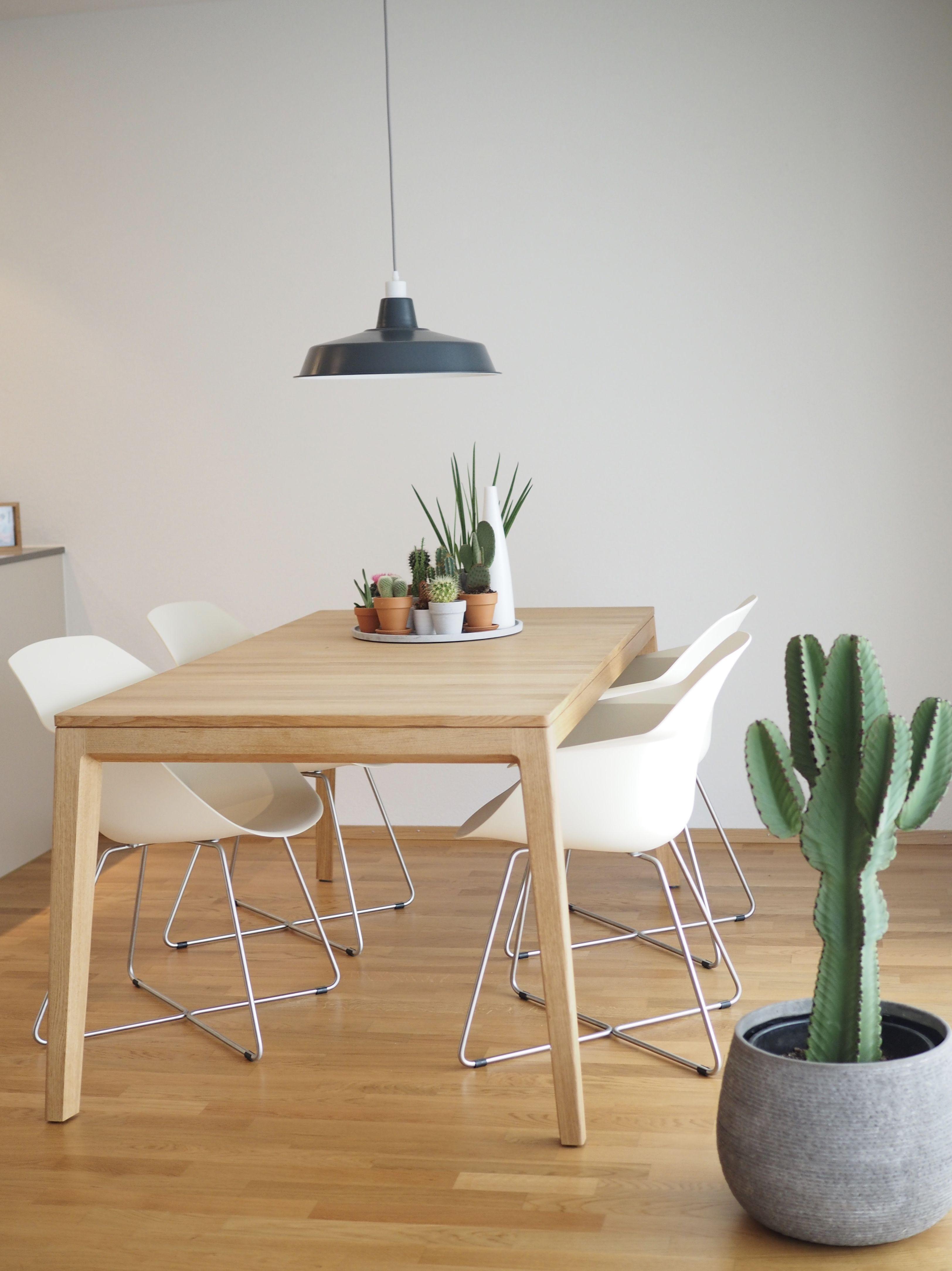 Cute Dining Room Esszimmer Mit Kakteen Von Carine Wenger Connox Beunique Kuchenstuhle Pastel Decor Wohnkuche