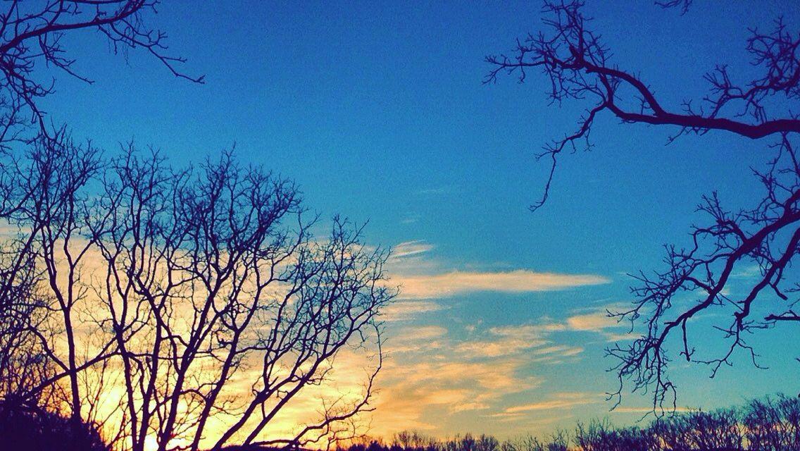 The mornin sky