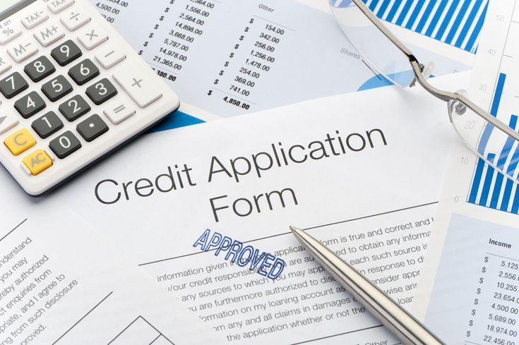 Need to Re-establish Your Credit? 3 Steps to Get a Secured Cerdit Card - credit card form