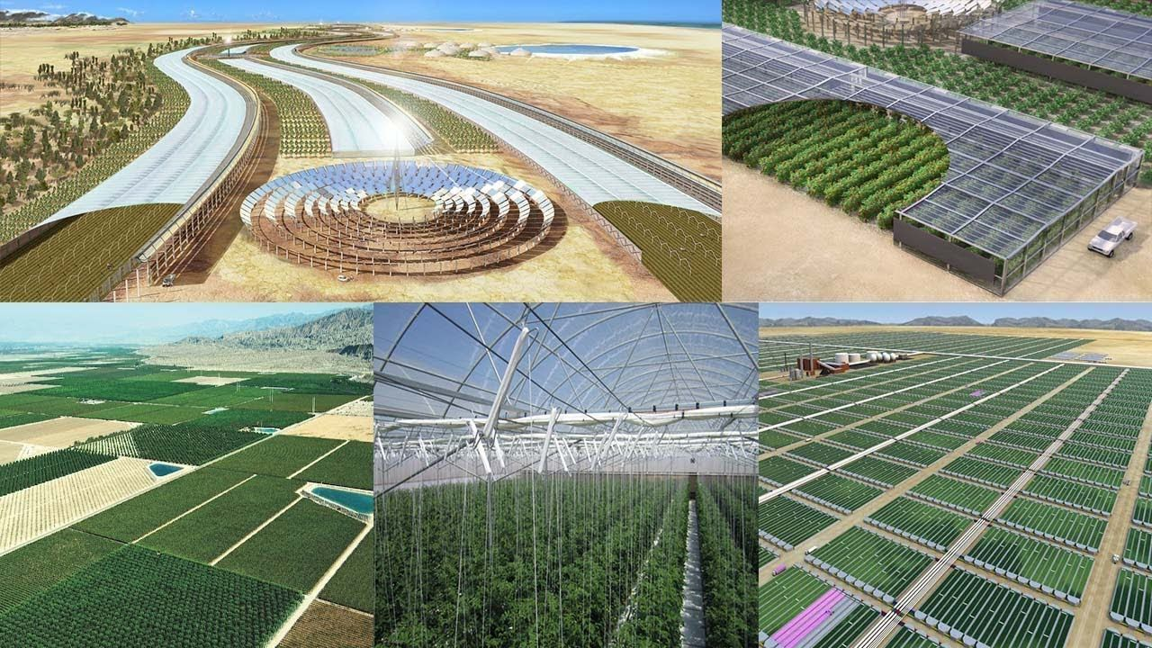 The Miracle of Turning Desert Into Productive Land! Desert