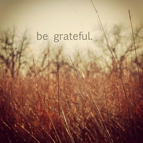 """""""The single greatest thing I can do to change my life today is to be grateful for what I have right now."""" Attitude of gratitude! YES!"""