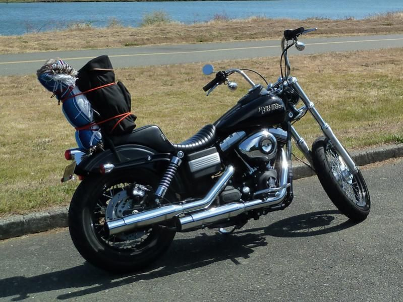 Diffrent Style Seats On Your Dyna S Please Post Pics Reviews Page 20 Harley Harley Davidson Forum Harley Davidson Sportster Harley Davidson Motorcycles