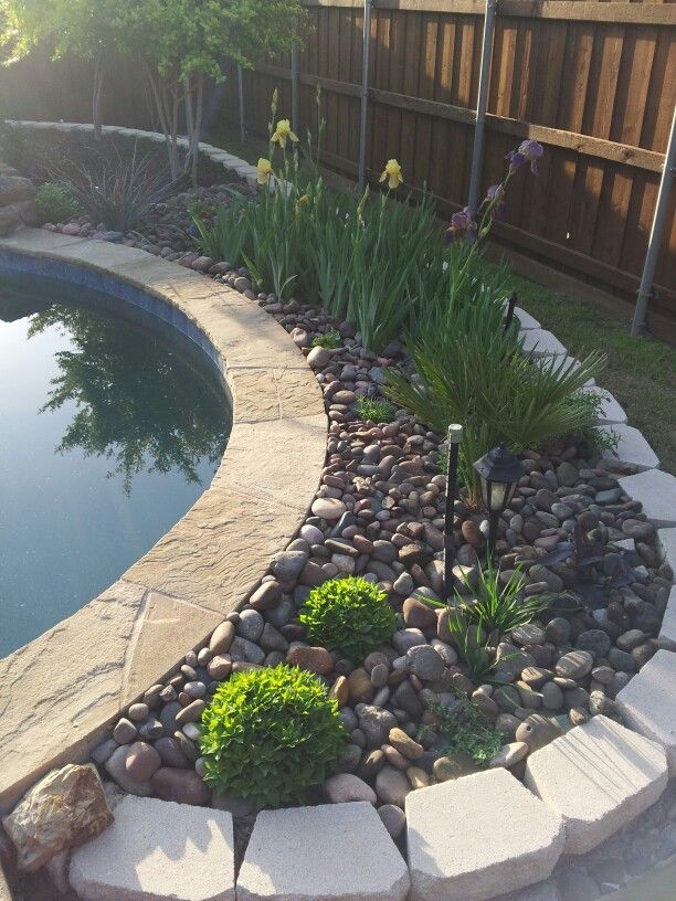 Rock garden flower bed behind pool backyard oasis for Gardens around pools