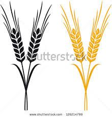 barley logo google search logo design pinterest logo google rh pinterest co uk barley vector art barley vector eps