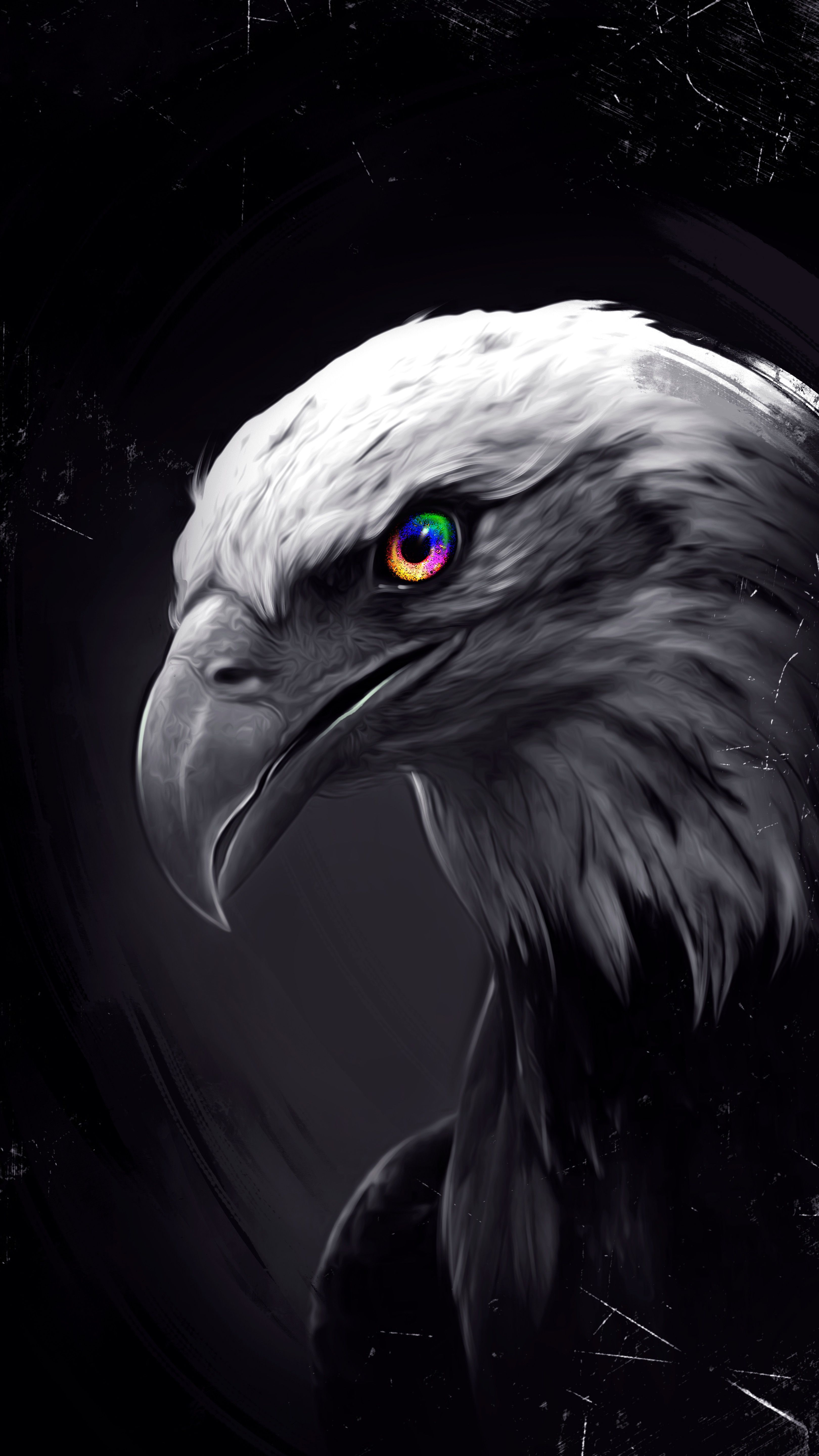 Pin By Ahmet S Aslanhan On Iphone 12 Pro Max Wallpaper Eagle Wallpaper Eagle Pictures Wild Animal Wallpaper Eagle bird full hd wallpapers