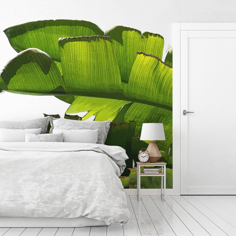 Best Banana Leaf Mural Large Wallpaper Tropical Wallpaper 400 x 300