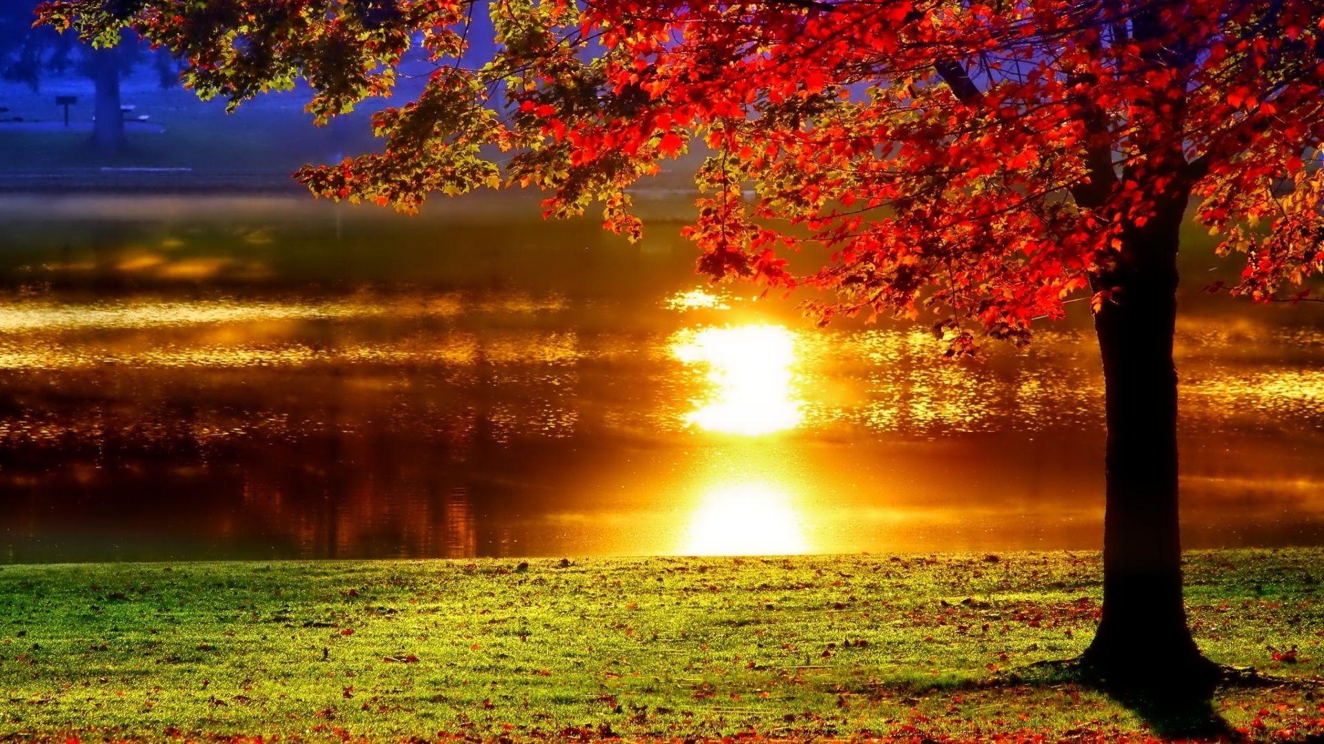 Autumn Sunset Lake