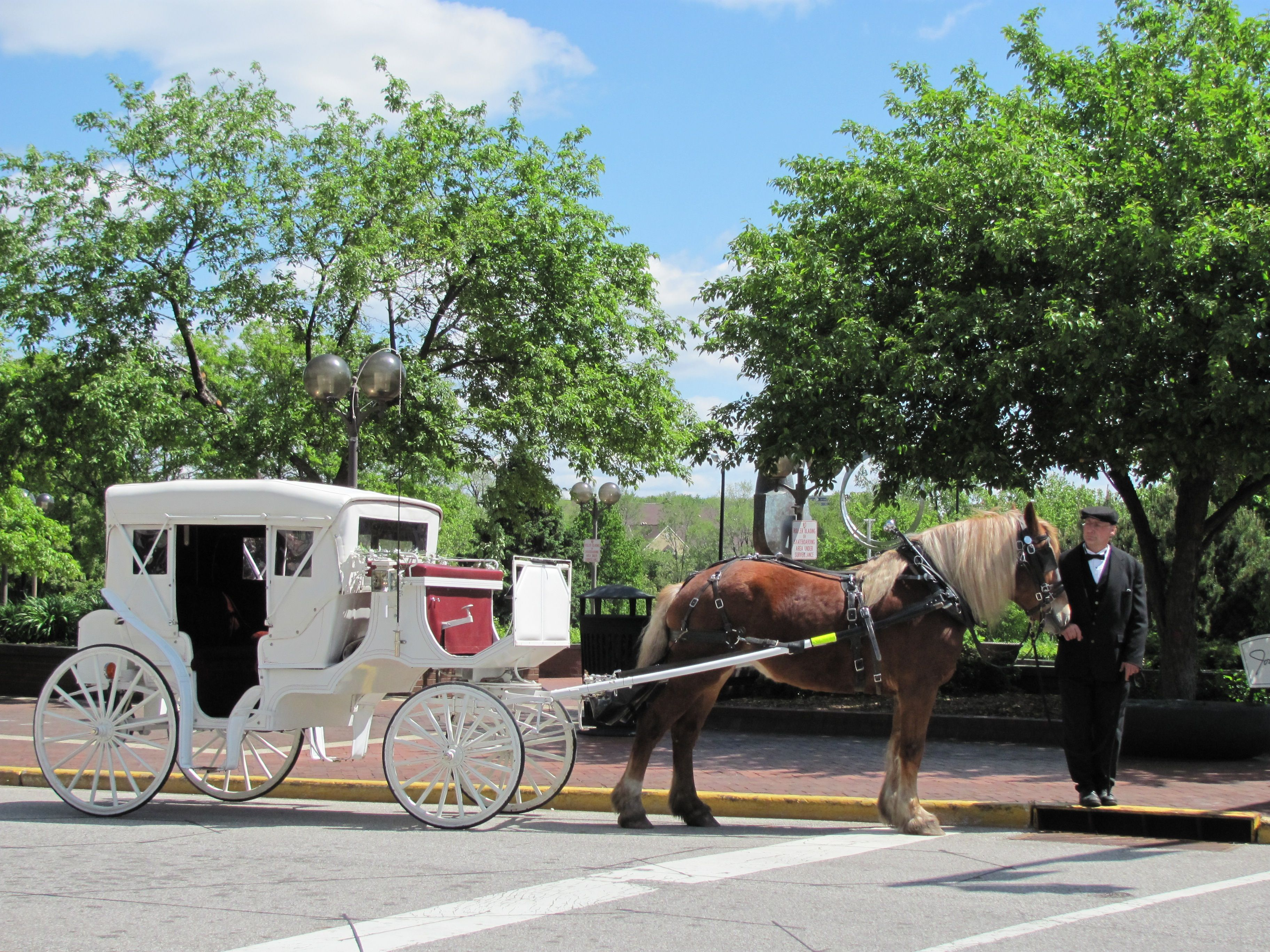 Carriage rides downtown south bend indiana south bend