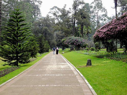 Victoria Park, Nuwara Eliya, Central Province, Sri Lanka