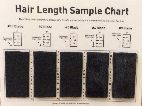 Shave Blade Sample Chart for Grooming by KreationsByKohler on Etsy - sample chart