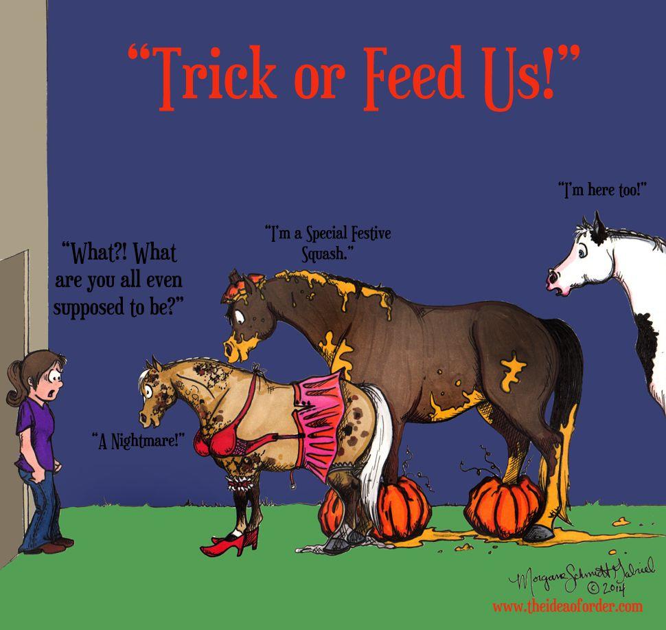 Looks - Halloween Happy horse pictures video