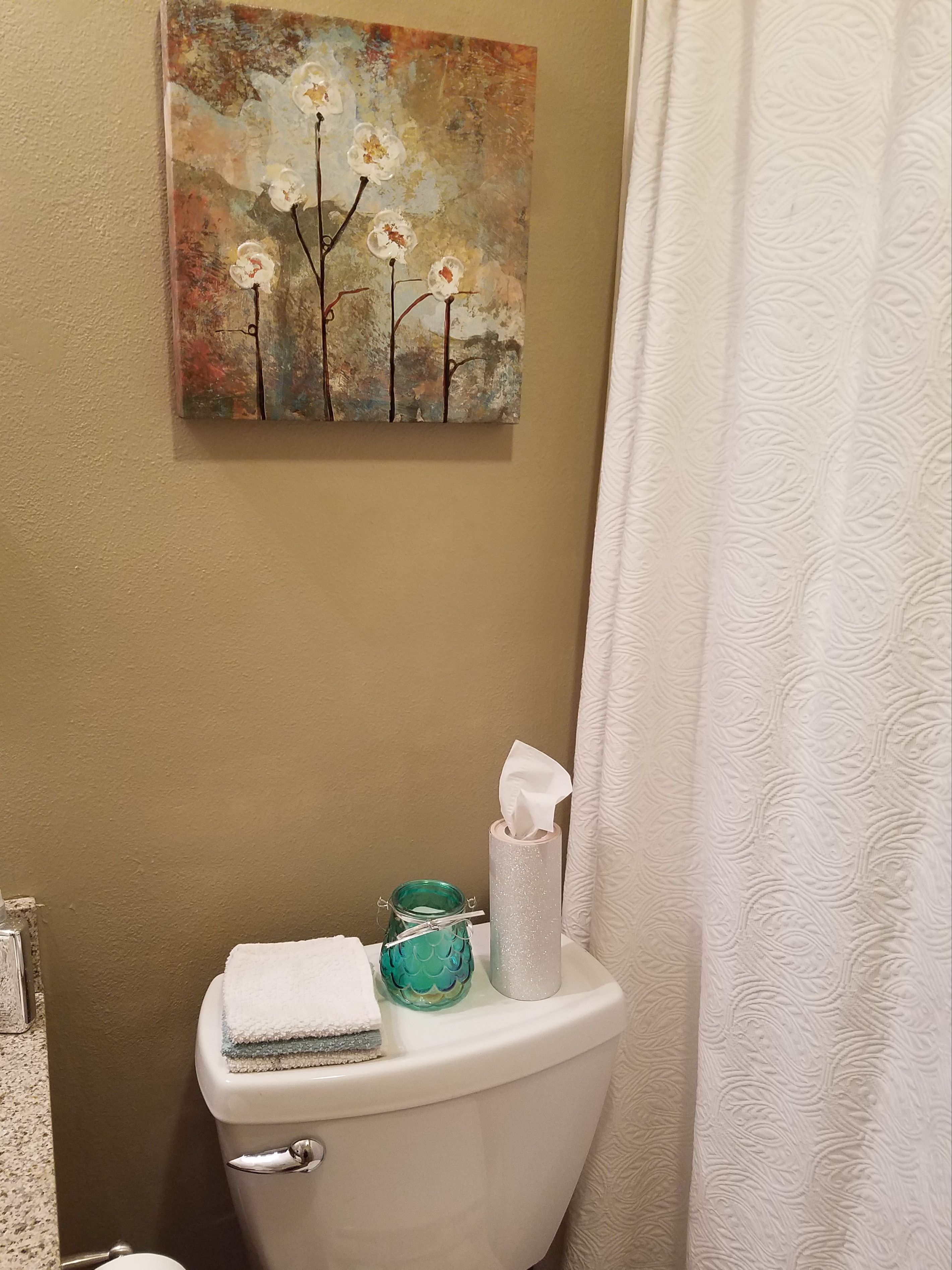 TJ Maxx Artwork Contact Paper Cylindrical Tissue Cover Battery Candle Towels All White Shower Curtain