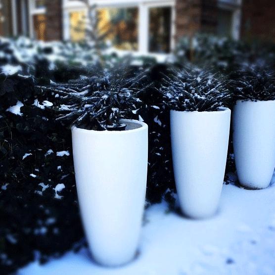 Winterzeit - Schnee ist überall!