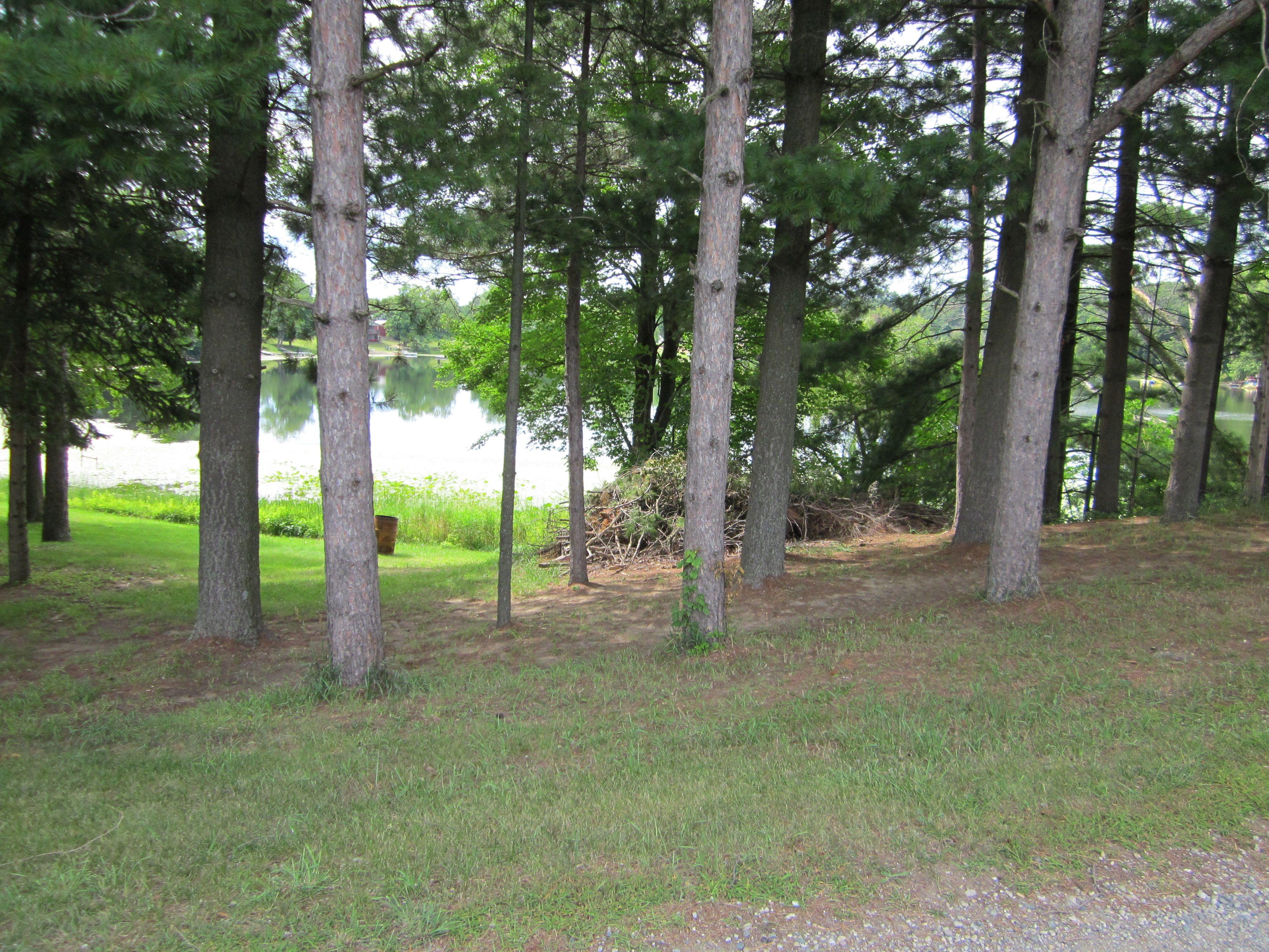 Lake Syl-Van through the pine trees