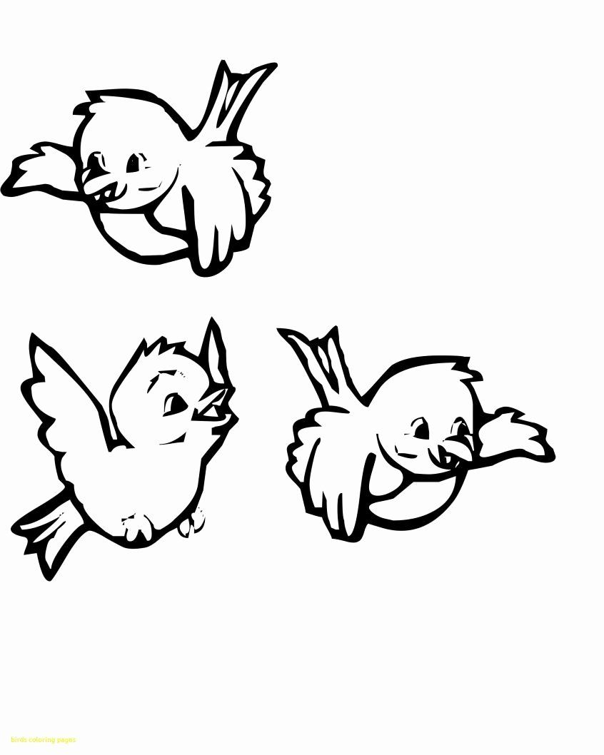 Cartoons Coloring Pages Pdf Elegant Coloring Pages Printable Little Animal Coloring Pages Bird Animal Coloring Pages Bird Coloring Pages Unicorn Coloring Pages