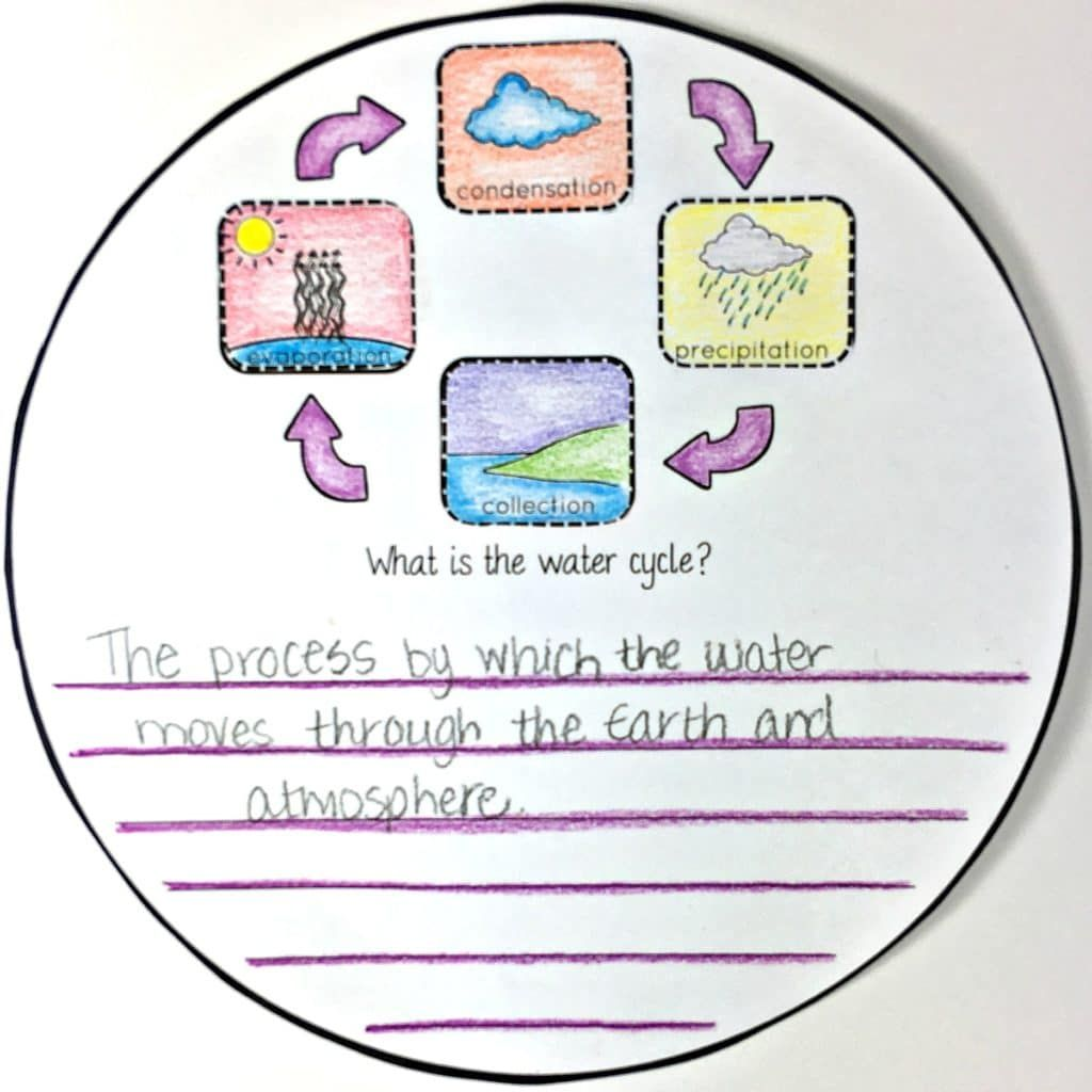 The Water Cycle Circle Book With Images