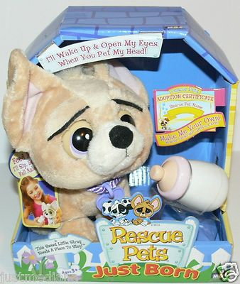 Toy Plush Rescue Pets Just Born Chihuahua They move and