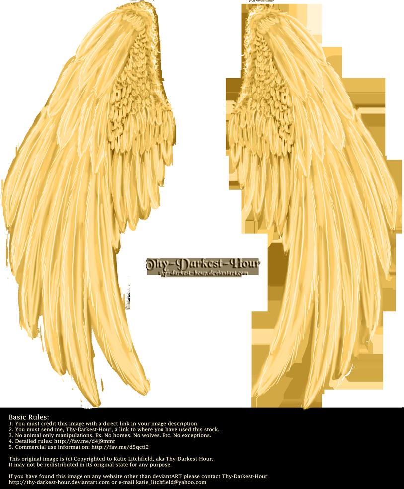 Winged Fantasy V2 2 Golden Free By Thy Darkest Hour On Deviantart Angel Wings Clip Art Angel Wings Tattoo On Back Wing Tattoos On Back
