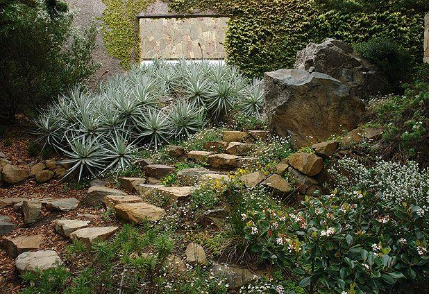 juan grimm paisajismo / jardín los vilos, coquimbo