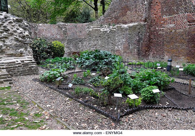 the-barber-surgeons-hall-tower-herb-garden