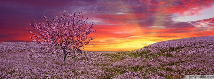 Nature Facebook Covers | Beautiful Nature Facebook Cover ...