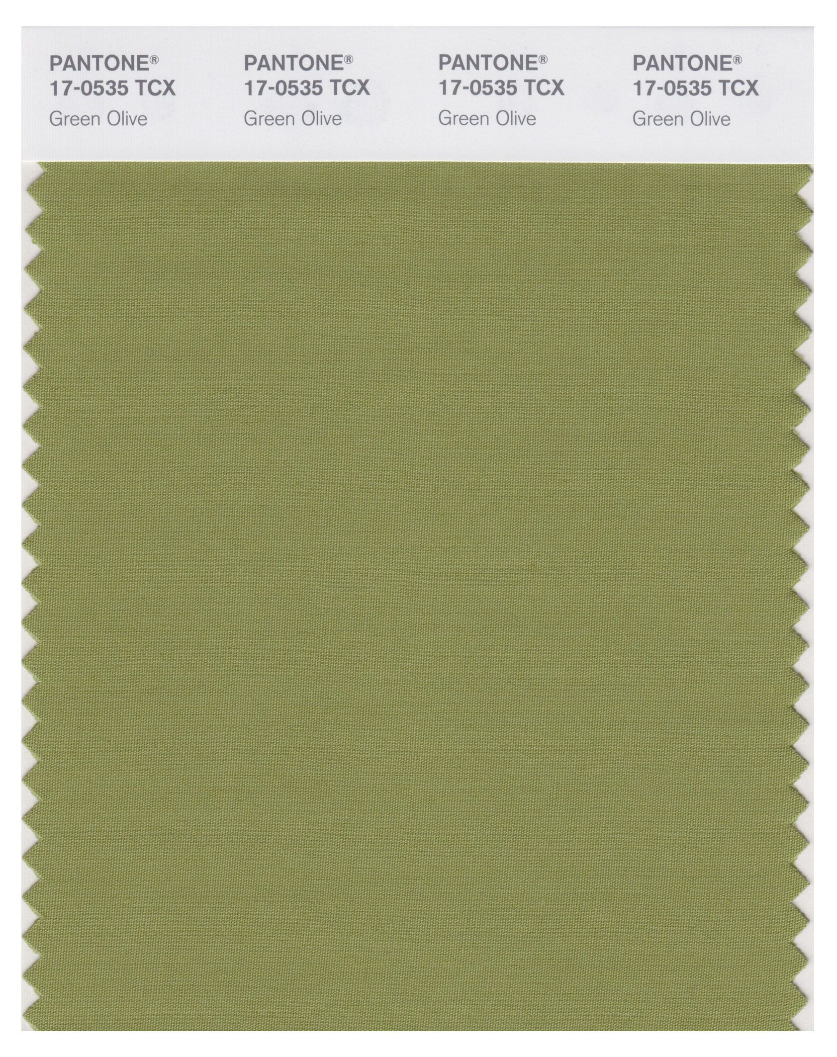 Match for green ribbon between this and sage green Sage green pantone