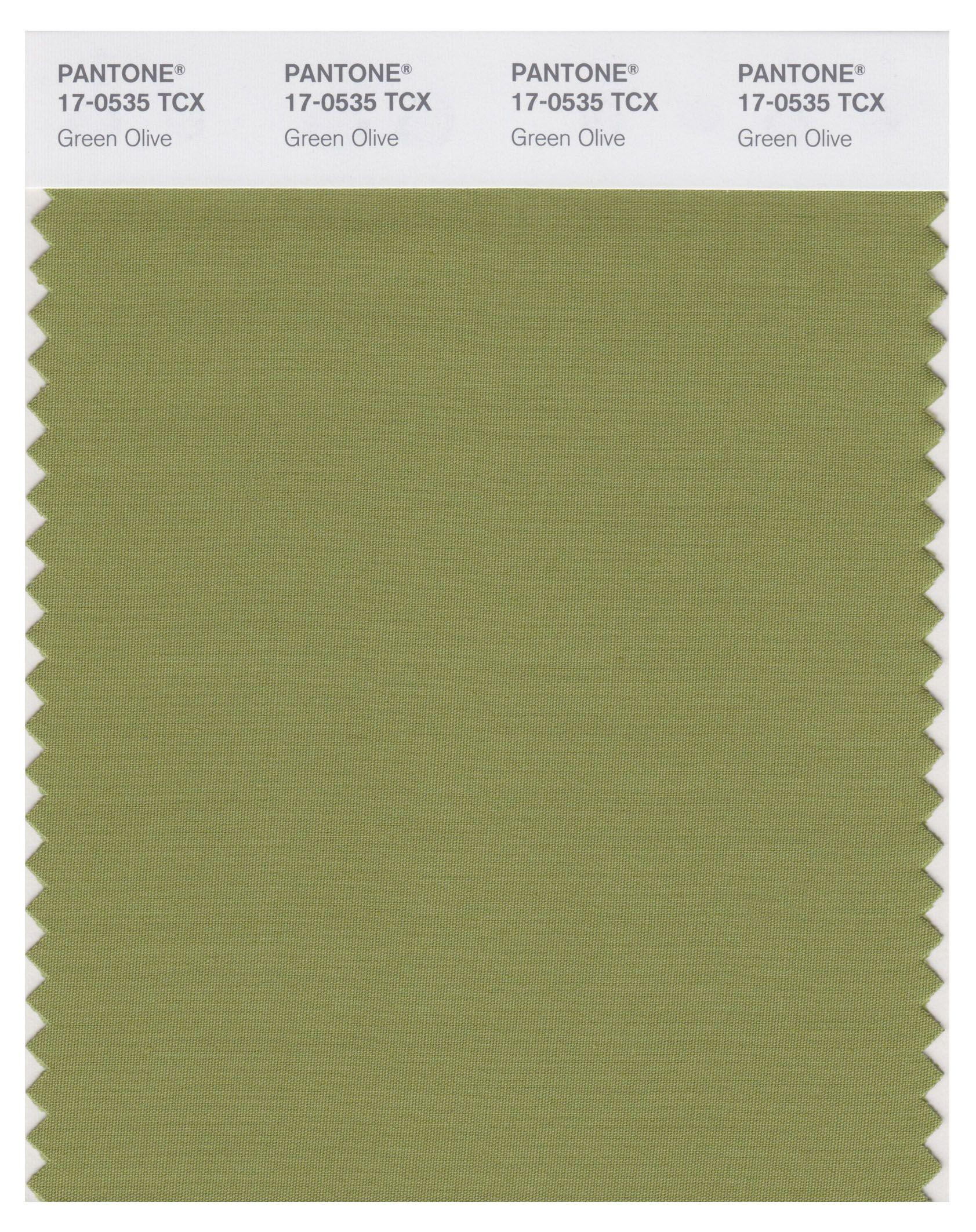 Resultado de imagen de green olive pantone