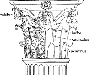 Greek Architecture Drawing not just another column - ancient greek architectural order