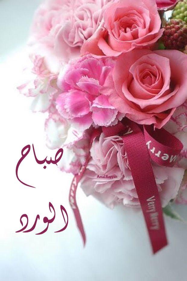 صباح الورد Beautiful Flower Arrangements Pretty Flowers Flowers