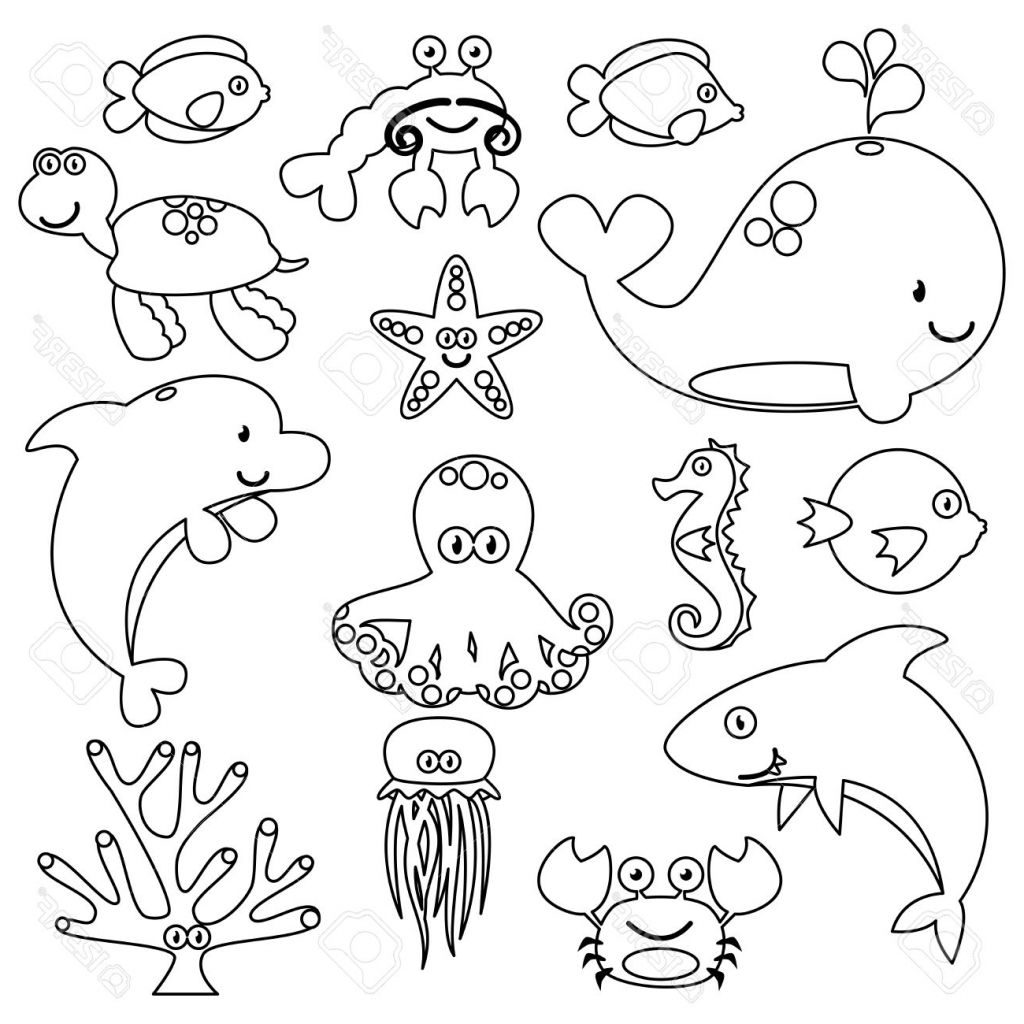 1024x1024 Aquatic Animals Sketches Sea Animals Drawing