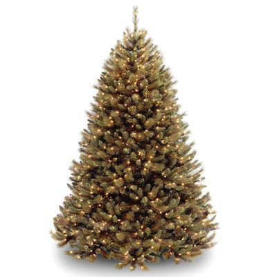 National Tree Co. Rocky Ridge 7' Green Pine Artificial Christmas Tree with 650 Clear Lights and Stand