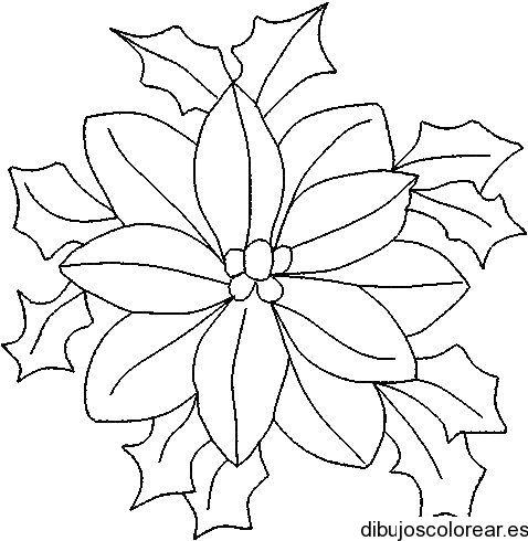 Flor De Pascua Para Colorear Imagui Hojas De Navidad Para