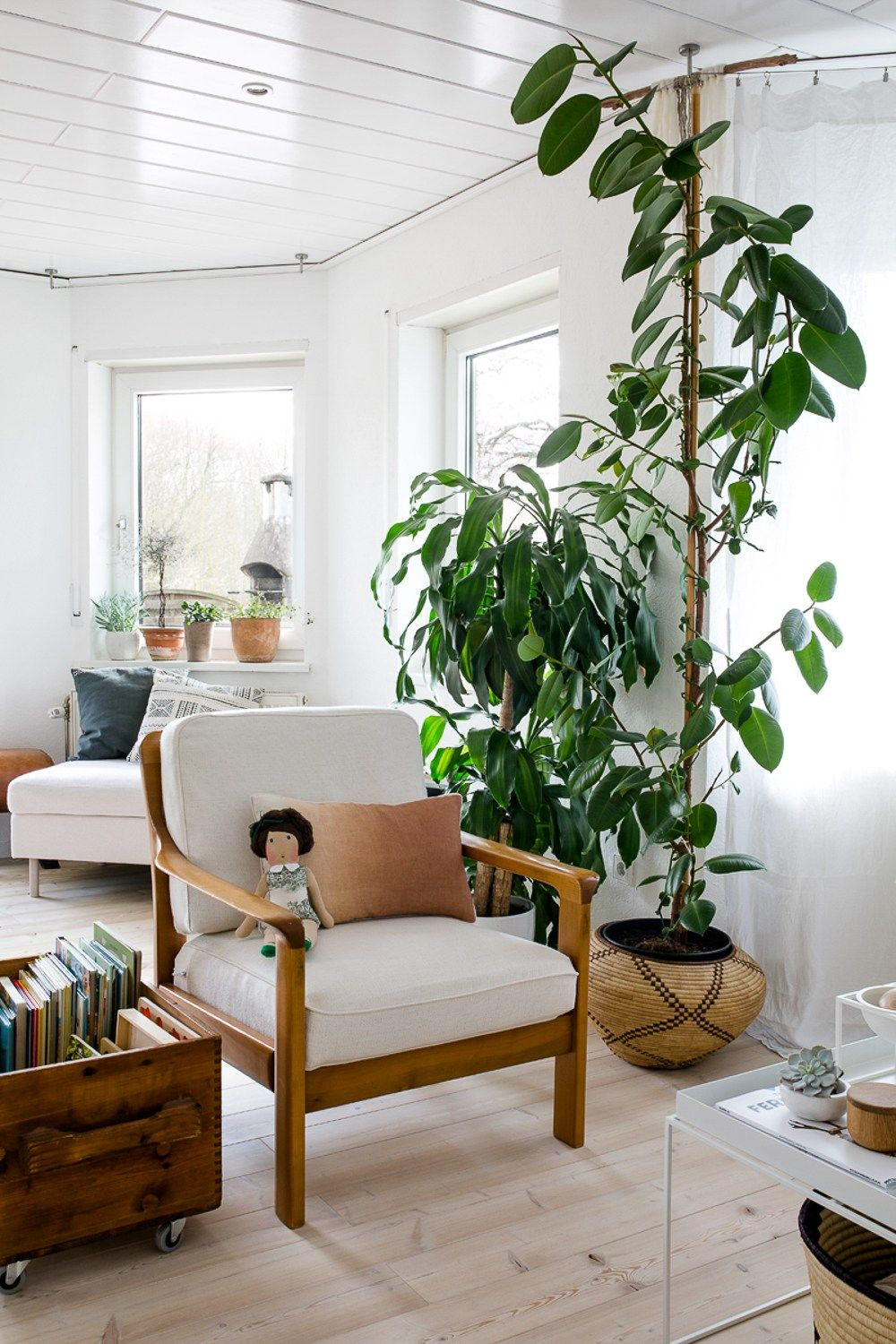 wooden frame chair with separate cushions :: tall plant :: room
