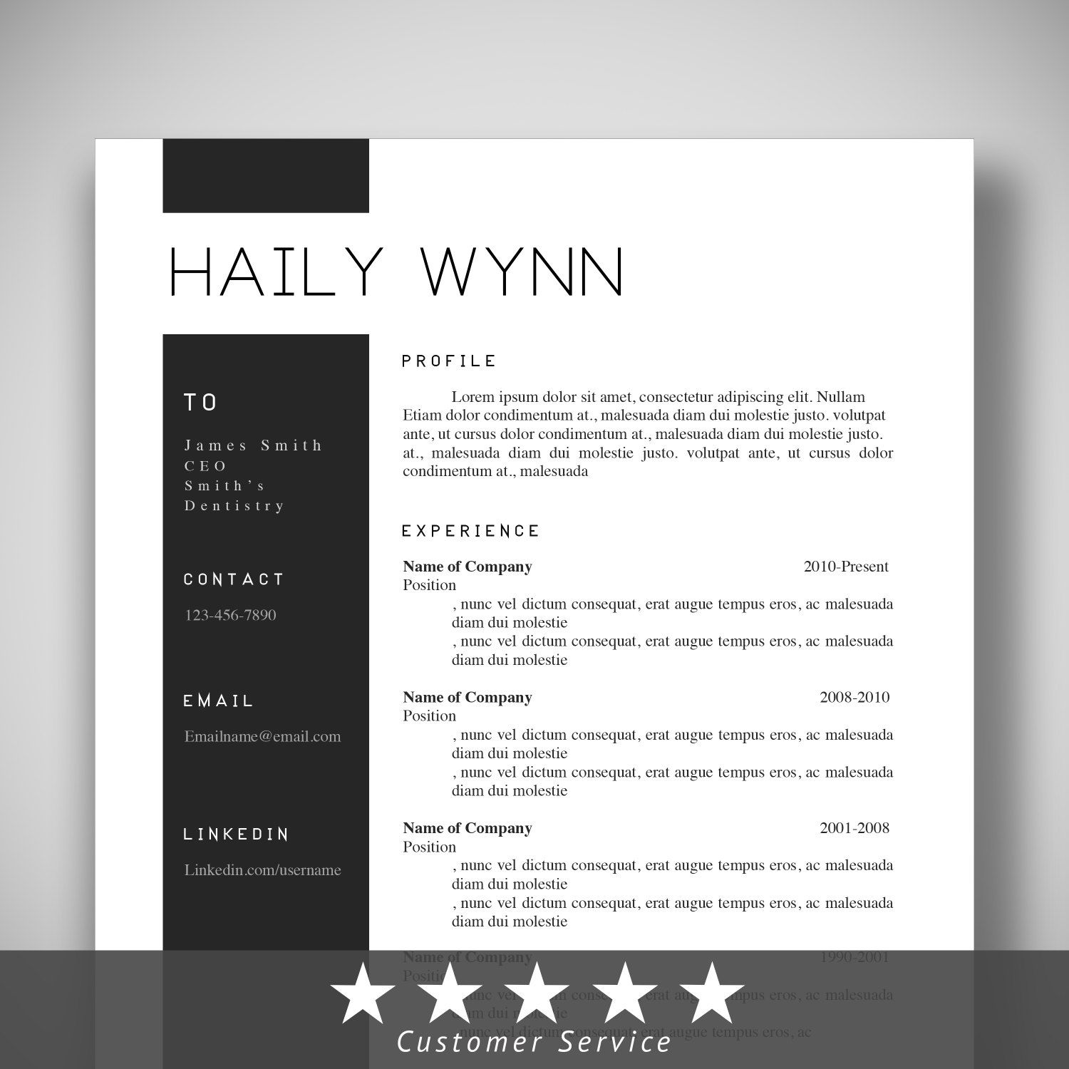 Professional Templates Resume Cv Template Professional Templates Instand Download Microsoft Word Customizable Beauti