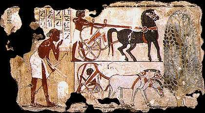 'Every season a landowner would have to give a portion of his harvest to the pharaoh as tax. It was this man's job to make sure that the boundary stones which marked a farmer's property were in place. If the boundary stones were in the right place he would figure out how much tax to charge the farmer on his crops. (Image from Nebamun's tomb)