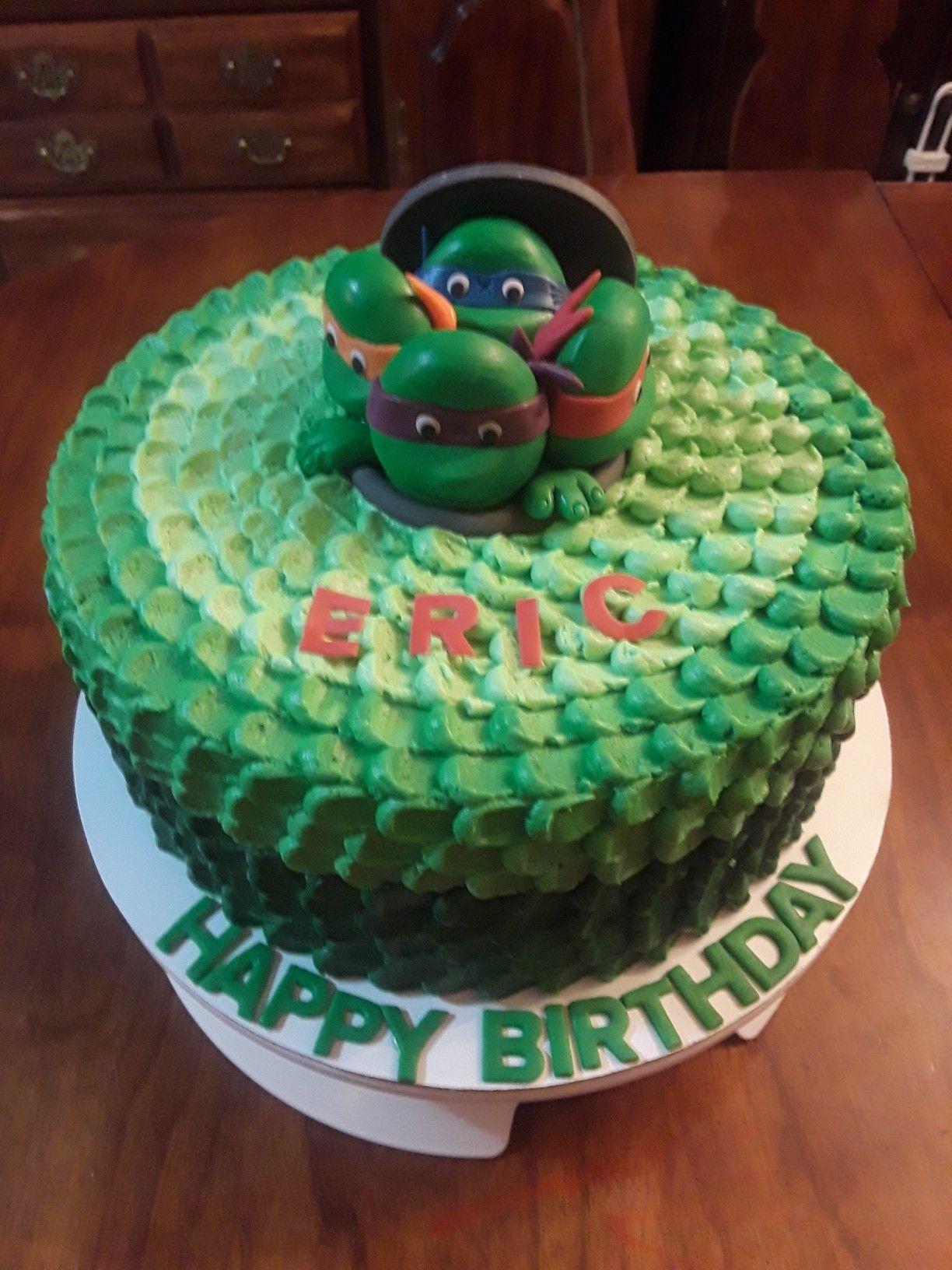 Teenage Mutant Ninja Turtles Ombre Chocolate Cake With Petal Design