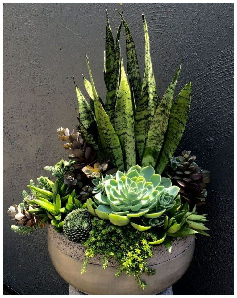 56 pretty front door flower pots that will add personality to your home 45 #flowerpot