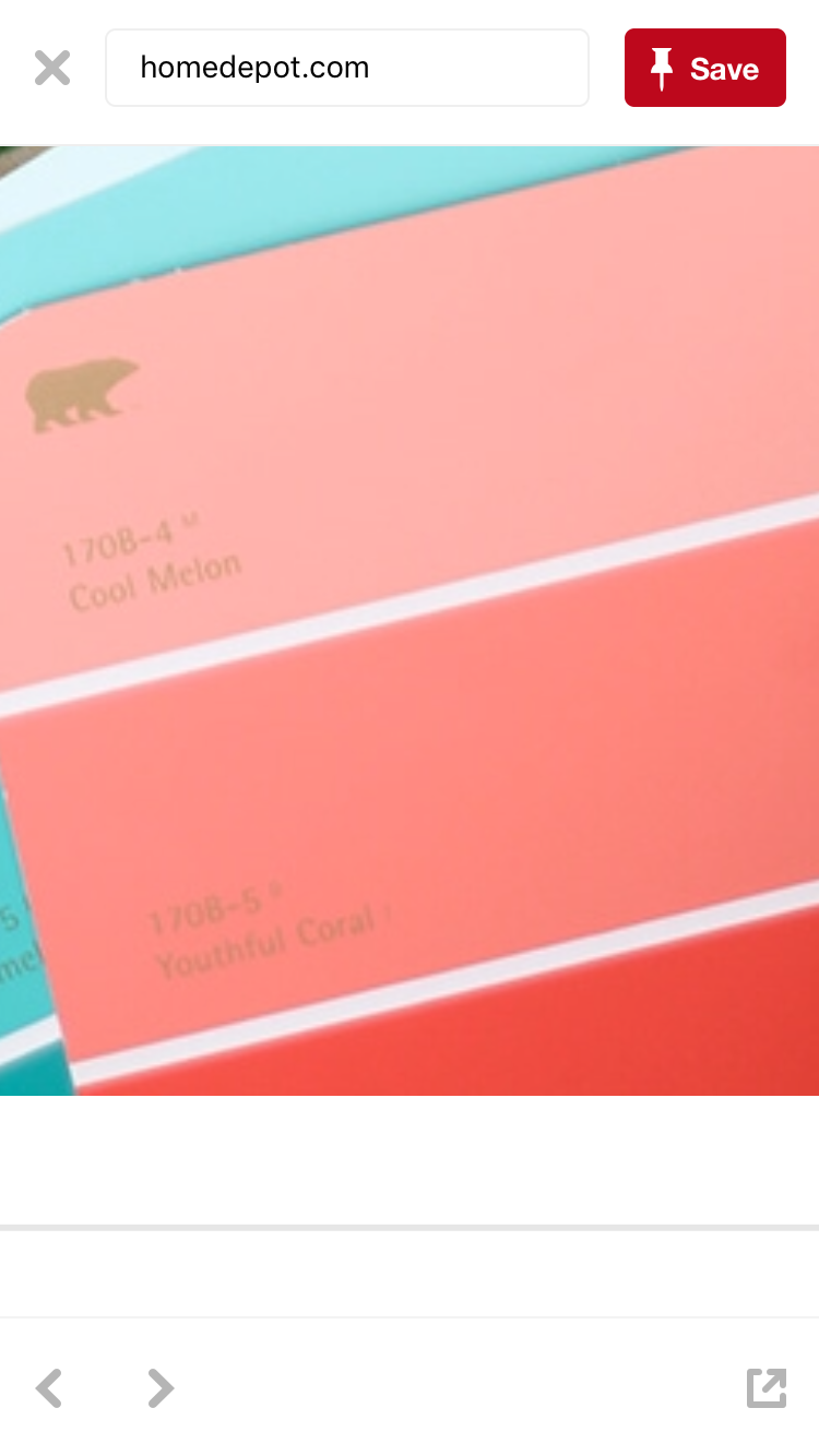 Coral paint colors Pale Youthful Coral Behr Coral Paint Colors Behr Paint Colors Paint Colors For Home Pinterest Youthful Coral Behr Girls Bedroom In 2019 Pinterest Coral