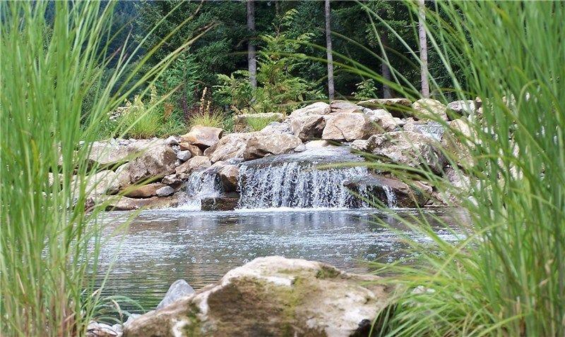 Natural Pond Design, Waterfall Design Swimming Pool Woody\'s Custom ...