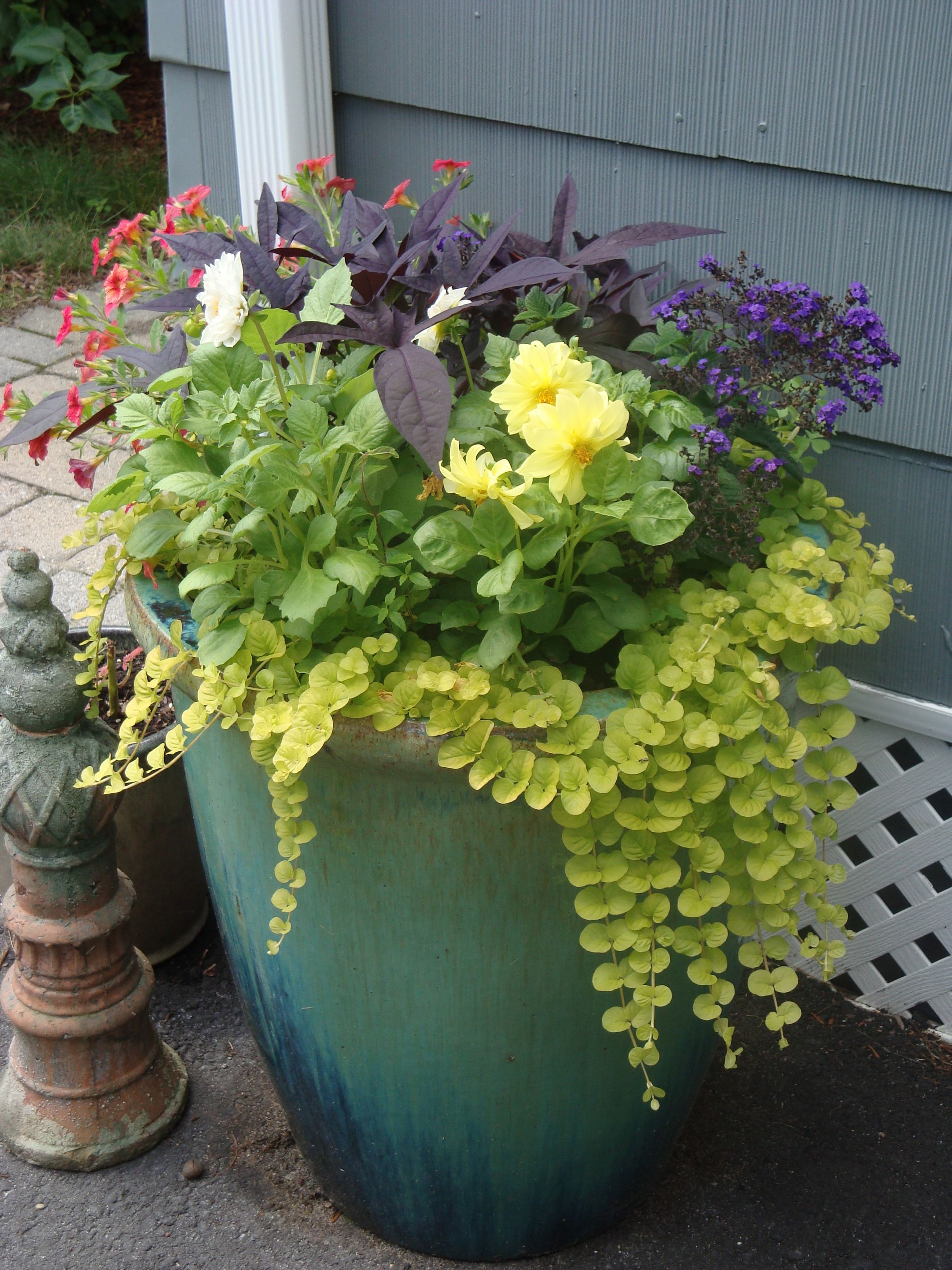 Tall Planters Allow Room For Beautiful Trailing Annuals. Garden Sitting  Areas, Backyard Plan,