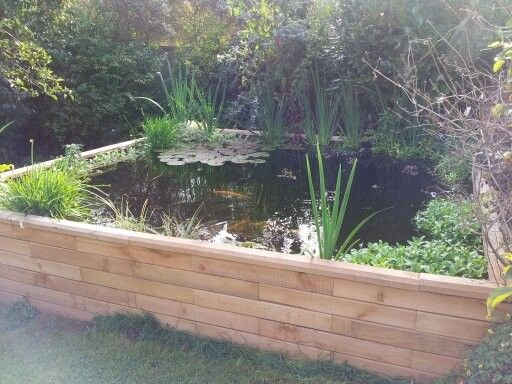 Gallery for raised backyard ponds secret garden for Raised koi pond ideas